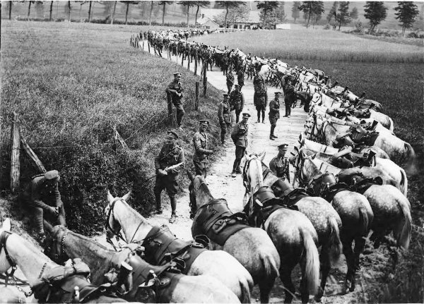 gallipoli krieg 1919