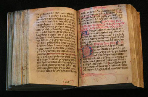 Read e-book The Bible in Translation: Ancient and English Versions